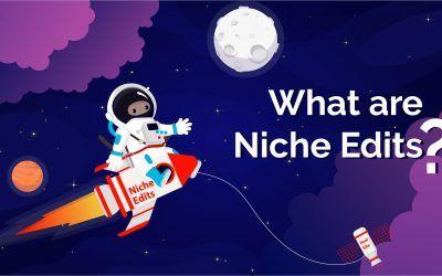 What Are Niche Edits